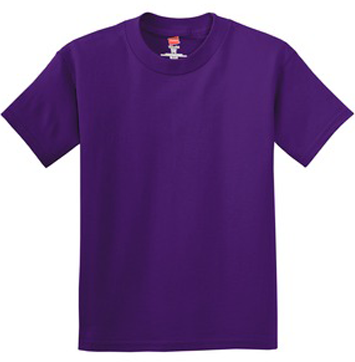 cropped-hanes-youth-purple.png